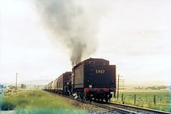 Banking the Wheat Train on Raglan Bank (oz_lightning) Tags: film landscape industrial transport tracks australia slide trains scan steam nsw series aus railways bathurst freight filmscan 5907 35mmfilmcamera yashicaj3 35mmslrcamera yashinon50mmf2lens canonpixmamg8150 railpage:class=139 rpaunsw59class hanimexcs50 railpage:loco=5907 rpaunsw59class5907