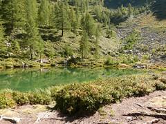 Valle Vogna (Riva Valdobbia) (fulvio timossi) Tags: lake alberi piemonte alpi montagna laghetto valsesia conifere boschi larici laghettoalpino larecchio