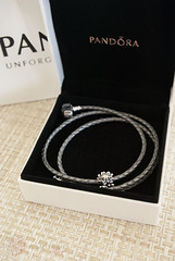 Little pleasures (helmitarha) Tags: flower jewelry charm bracelet pandora edelweiss zirconia