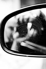 weB (niK10d) Tags: self mirror spiderweb vanmorrison pentaxk10d 31mmf18limited