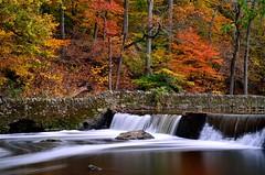Nature's Magic (PhillymanPete) Tags: autumn urban blur color fall philadelphia nature water landscape mo