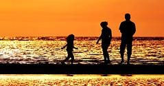 Persian Gulf, Sunset, Family (Vafa Nematzadeh Photography) Tags:
