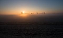 _DSC5633.jpg (Ingeborg Ruyken) Tags: morning autumn sky sun mist ice fog sunrise dawn haze nevel flickr frost december herfst freezing lucht polder zon risingsun ochtend facebook ijs boerderij vorst zonsopkomst kruisstraat natuurfotografie vriezen 2013 opkomendezon catsunriselandscape catfogandmist