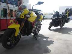 """Our escort to the highway • <a style=""""font-size:0.8em;"""" href=""""http://www.flickr.com/photos/98061816@N08/11703003923/"""" target=""""_blank"""">View on Flickr</a>"""