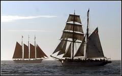 h_AK38153b (KrisFricke) Tags: tallships sailingships schooners danapointtallshipfestival