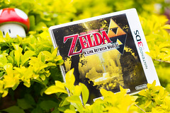 The Legend of Zelda: A Link Between Worlds (FaruSantos) Tags: nintendo games videogames zelda 3ds nintendo3ds