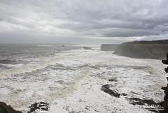 White Water (DMeadows) Tags: sea sky seascape castle water landscape coast scotland whitewater waves crash north cliffs spray coastal fortress berwick noisy crashing tantallon davidmeadows dmeadows davidameadows dameadows