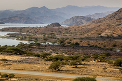 Jizan Baysh Valley Lake-5211 (Androtopia) Tags: saudiarabia jizan