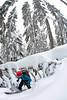 """Row yer boat trees"" Chance Roe Creek Feb 22,23 2014      -4 (Pat Mulrooney) Tags: snow canada zoe whistler ross britishcolumbia danielle powder g3 sled squamish snowmobile skitouring seatosky coastmountains arcteryx chancecreek backcountrysnowboarding roecreek g3skins patmulrooneyphotography skidoosummitrevxm g3blacksheepcarbon"