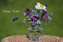 Happy Easter !  :) (Myo-Myo) Tags: flowers stilllife flower closeup canon easter eos spring canon600d