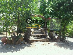 [C21U00046] House for sale, include 3 houses, land size 4 rai 2 ngan 33 sqw at Ban Suan Doi Saket, Chiang Mai