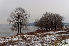 Monheim am Rhein Winter 2015 (KL57Foto) Tags: winter river am olympus nrw rhine landschaft rhein rheinland monheim 2015 monheimamrhein epm2 stadtmonheim kl57foto stadtmonheimamrhein