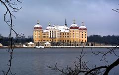 Winter auf Schloss Moritzburg (Beginner1970) Tags: castle germany landscape deutschland nikon sachsen schloss moritzburg d5200