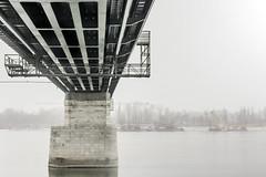 szerkezetek (TheMutantCow / MutánsTehén) Tags: bridge urban hungary ship crane ships budapest duna danube buda híd pest óbuda daru hajó aquincum hajók shipcrane szerkezet szerkezetek hajodaru