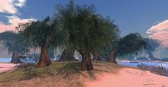 France Portnawak-Aquarelle (Sannita_Cortes) Tags: lighthouse tree nature water animal boats aquarelle romance lovers sl secondlife virtual maritime virtualworld virtuallandscape virtualanimal virtualnature franceportnawak