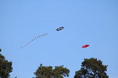 La Hulpe - Prenez l air (2) (Patrick Williot) Tags: la air fete chateau brabant domaine cerfs volants wallon solvay hulpe