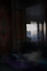 backyard and dog (Kenneth Rowe) Tags: longexposure multipleexposures d7000