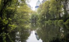 The Pond (Joe Josephs: 2,650,890 views - thank you) Tags: nyc newyorkcity newyork landscapes centralpark photojournalism centralparknewyork urbanlandscapes travelphotography landscapephotography cityparks urbanparks copyrightjoejosephsphotography