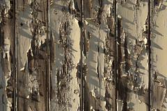 2304 (franzmarkus) Tags: nikon fx d600 farbe verwittert germany sachsenanhalt detail