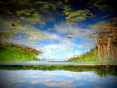 IMG_7850 (Mat_B) Tags: park lake reflection green nature water clouds spring natural state walk horizon down hills swamp area land scape moraine upside defiance 2016