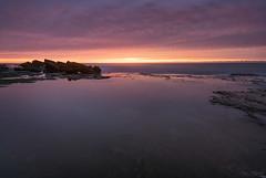 Simplicity (Crouchy69) Tags: ocean sea sky seascape reflection beach water clouds sunrise landscape dawn coast rocks sydney australia mona vale