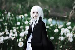 04 (milo_59) Tags: luv zaoll