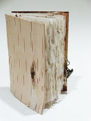 Birch Bark Book (ArcticCoyote) Tags: art paper bookbinding bookmaking handmadebooks