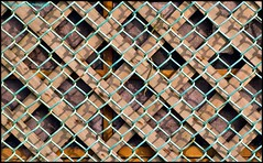 """""""You need to look around, because if you can't see, your camera is blind"""" - Mike Browne (Beachhead Photography(Is in standby mode)) Tags: wood lines wall fence outdoors pattern diagonal lattice beachheadphotography"""