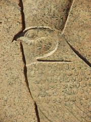 Horus, Temple of Karnak Egyptian Art (shaire productions) Tags: world travel sculpture bird art history tourism animal outdoors temple photography design wings tour exterior image artistic god hawk beak egypt picture culture carving egyptian figure falcon horus beast winged karnak creature luxor archeology mythology myth cultural figurative thebes mythos ancientegypt egyptandthenile