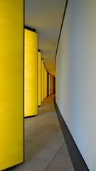 Fondation Louis Vuitton (pi3rreo) Tags: city urban abstract yellow jaune musée extérieur vuitton ville urbain abstrait