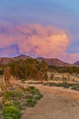 Dog Head Fire (G.E.Condit) Tags: sunset sky mountain newmexico southwest landscape fire desert smoke albuquerque trail rockymountains nm sandia plume manzano 6d doghead fourhills grantcondit gecondit sandiamoiuntains