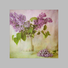Paint Lilac (BirgittaSjostedt- away for a while.) Tags: old stilllife plant flower painting still paint blossom unique pastel pot lilac ie anique photoborder magicunicornverybest birgittasjostedt