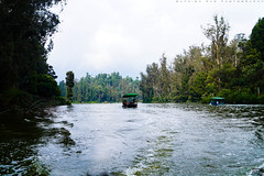 A Journey (Sathish Photographs) Tags: trip travel trees lake water beautiful beauty boats evening exposure waves time outdoor journey experience lovely eco enjoyment tamilnadu ooty