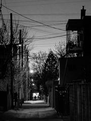Ruelle de Villeray, Montral (Richard Lehoux) Tags: blackandwhite bw canada night blackwhite noiretblanc montreal streetphotography nb backstreet qubec ruelle nuit villeray
