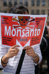 Monsanto kills (Red Cathedral uses albums) Tags: brussels sony streetphotography greenpeace alpha gmo brussel greve larp monsanto betoging monsatan redcathedral staking ttip globalclimatemarch a850 eventcoverage sonyalpha aztektv stoptafta jesuisbruxelles nuitdebout placedelarbertine stopregeringmicheldewever