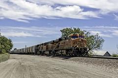 Westbound at Holt (lennycarl08) Tags: california railroad trains bnsf burlingtonnorthernsantafe burlingtonnorthernsantaferailroad stocktonsub holtca