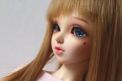 One more Gamble (Gigiholy) Tags: wig fairyland modded minifee formydoll nomyens oscardolleyes nanuri16