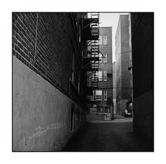 (Olivier ) Tags: street city urban blackandwhite bw canada 6x6 film rollei analog rolleiflex zeiss square photography quebec kodak bokeh tmax montreal monochrom tmax400 planar 80mm twinlens