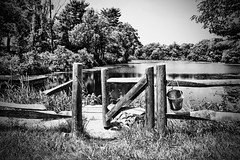 Summer (Silverio Photography) Tags: summer lake nature massachuetts newengland suburb fence wooden canon 60d sigma 1770 photoshop elements topaz adjust hdr blackandwhite