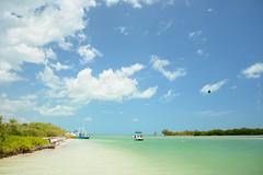 Isla de la Pasin (Ibaez Matias) Tags: mexico mar isla paraiso caribe holbox