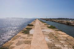 DSC_5597 (Pasquesius) Tags: sea island dock mare lagoon sicily laguna saline molo sicilia saltponds isola marsala mozia mothia stagnone motya riservanaturaledellostagnone