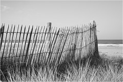 Normandie_16 *35 (KKS_51) Tags: mer dunes plage dnen bassenormandie hatainville