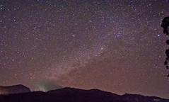 Milky way in Munnar ([s e l v i n]) Tags: sky india night stars star kerala nightsky nightlife munnar milkyway keralatourism keralatravel picturesofkerala selvin