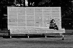 The big bench and the little mrs (Wal CanonEOS) Tags: park street plaza parque blackandwhite bw woman streets byn blancoynegro blanco argentina lady canon bench eos calle mujer buenosaires day y candid negro banco dia parkbench mrs callejeando hdr calles caballito bsas seora airelibre plazairlanda caba monocromatico capitalfederal ciudaddebuenosaires hdrbw superbank alairelibre argentinabsas bancodeplaza ciudadautonoma streetsbw rebelt3 canoneosrebelt3 thebigbench thebigbenchandthelittlemrs lagranbancaylapequeaseora superbanco thelittlemrs