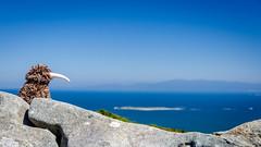 Kiwi looking over to Rakiura (Kathrin & Stefan) Tags: ocean sky nature rock toy island scenery outdoor lookout kiwi tasmansea softtoy rakiura stewartisland foveauxstrait
