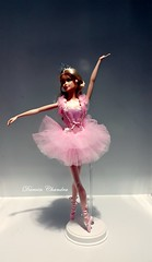 Ballet Wishes (Darwin Dizz) Tags: pink ballet ballerina label barbie muse wishes mackie collector