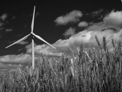 P6190015 (asferic) Tags: catalonia bn windpower rubi eolic