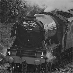 Photo of FLYING SCOTSMAN_AUTHENTIC by Philip Gott