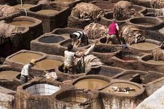 Tannery - Fez - Morocco (wietsej) Tags: sony morocco fez 18200 tannery tamrob nex7
