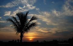 Dawn at Karachi (The Optographer) Tags: dawn karachi silhouette